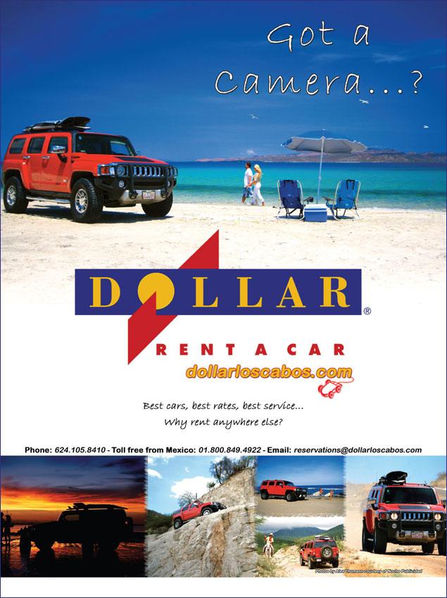 Dollar Rent A Car Insurance Requirements