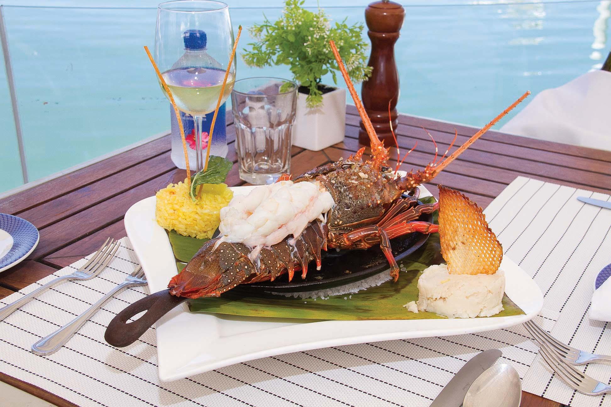 Lobster Bisque Definition | Lobster House