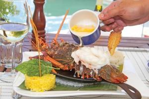 Baja Lobster_8oct15_MV_01