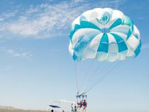 The Directory, Your guide to Los Cabos activities – LCM 52 Spring 2020