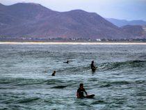 Surf – LCM 54 Summer 2021