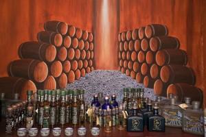 Tequila-Cabo-Unico_02abril2014_SO_23