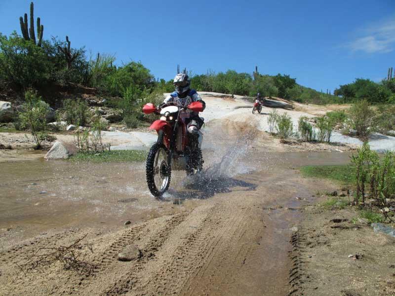 Baja Dirt Motorcycle Adventours Los Cabos Magazine