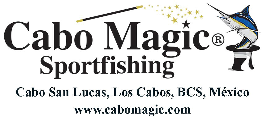 Cabo magic sportfishing 2a los cabos magazine for Magic sport fishing