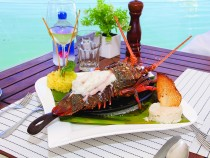 Titan of the Sea – Baja Lobster Co. is the definition of casual elegance on the Cabo San Lucas Marina