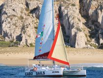 The Perfect Sail – LCM 50 Winter 2019