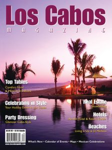 Cover Stories - LCM 51
